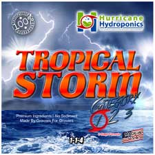 Tropical Storm 1 Label