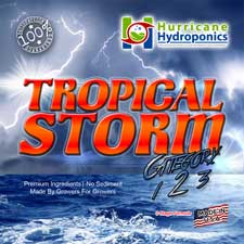 Tropical Storm Label